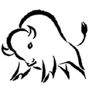 Бизоны